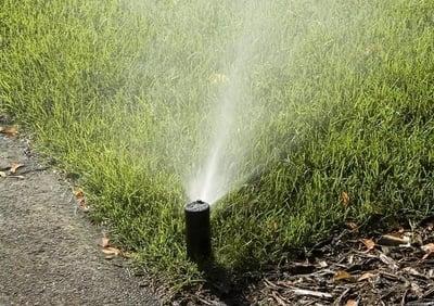 watering lawn in Cincinnati