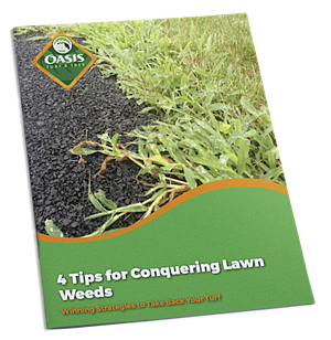 Getting rid of weeds in your lawn in Cincinnati, Dayton, OH, or Northern Kentucky.