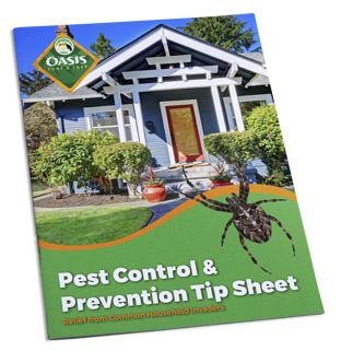 Learn about pest control and prevention tips for your home in Cincinnati, Dayton, OH or N. Kentucky.