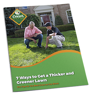 oasis-thicker-greener-lawn-tips.png