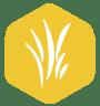 gold lawn care program icon