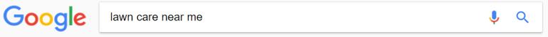 Google Search Lawn Care Near Me