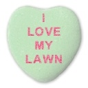 How a lawn care service can help you fall in love with your lawn all over again each day.
