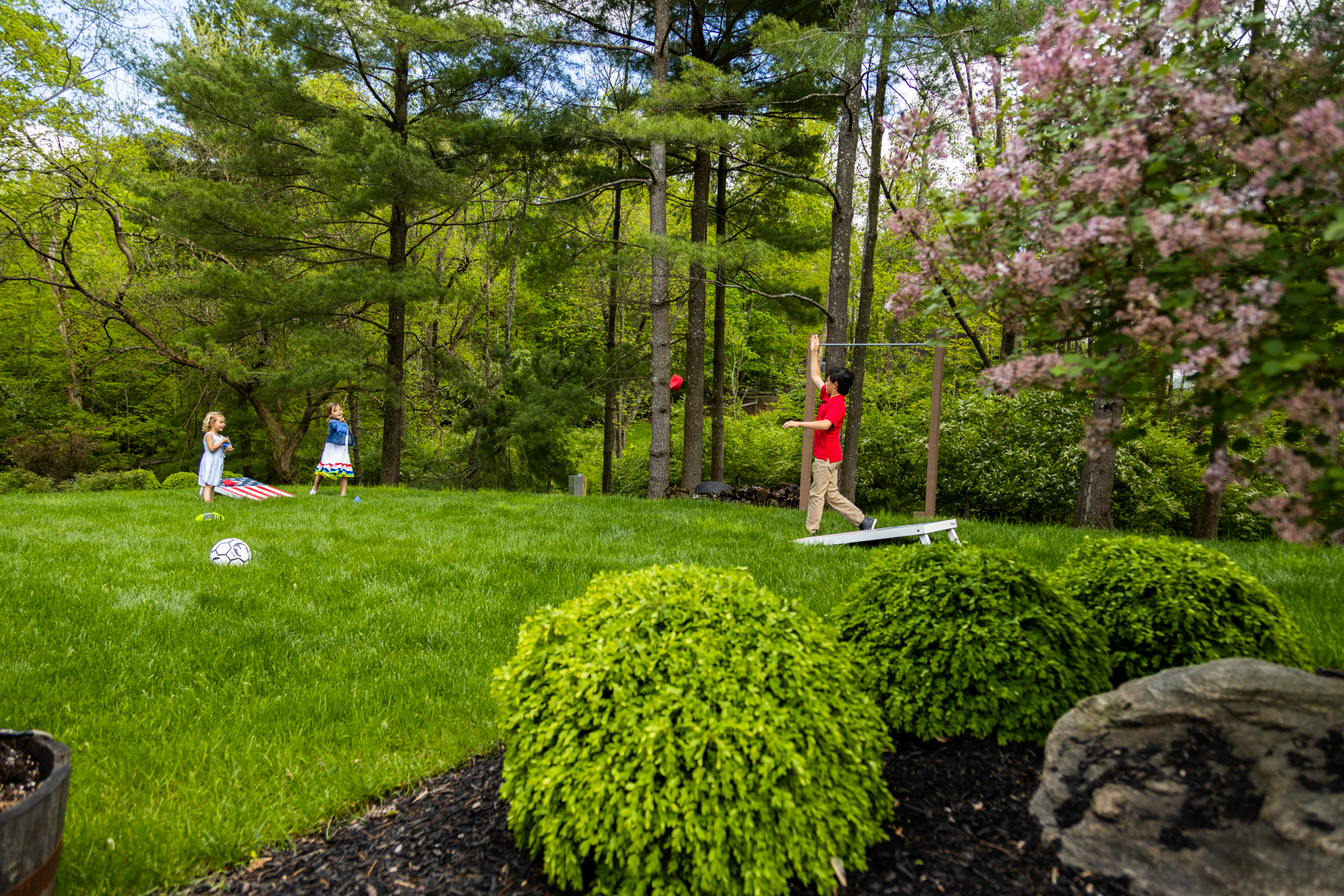 Healthy lawn can be great for the environment