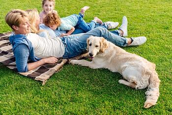 Happy family and dog relaxing in lawn with mosquito control treatment