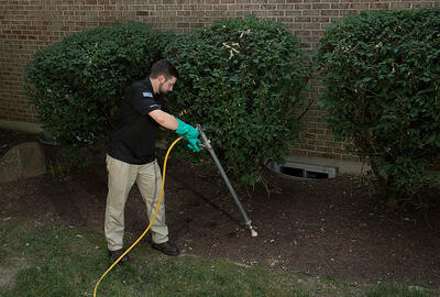 deep-root-tree-fertilizer-1