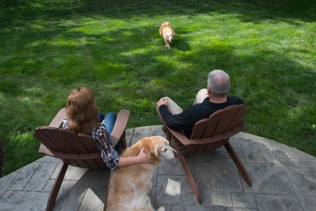 Customer enjoying their lush green lawn with their dogs