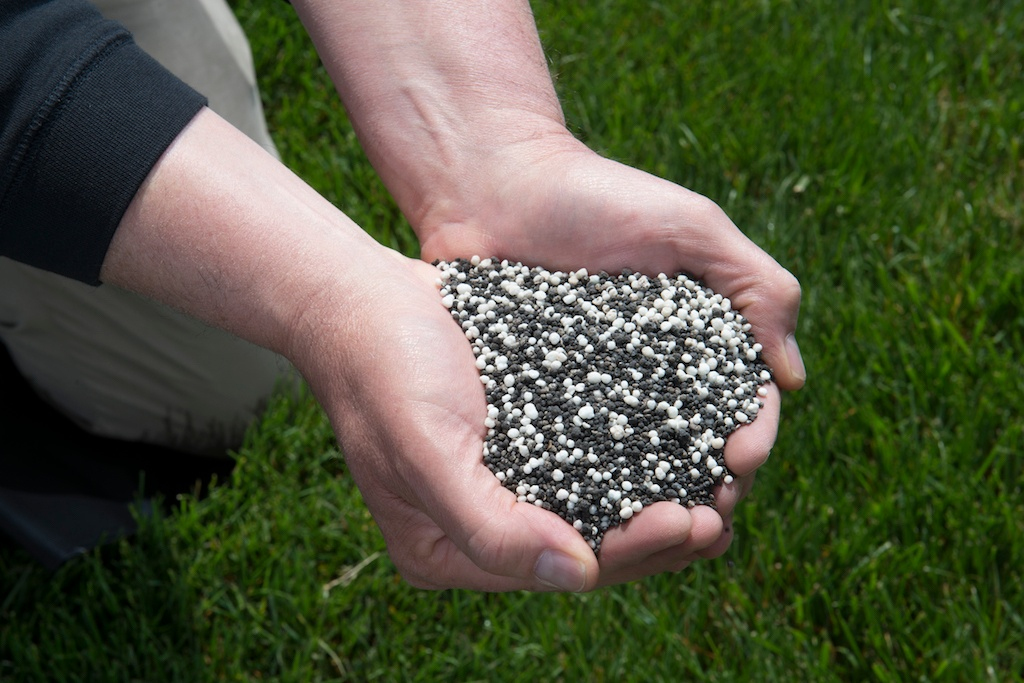 lawn care bionutrition to promote soil health