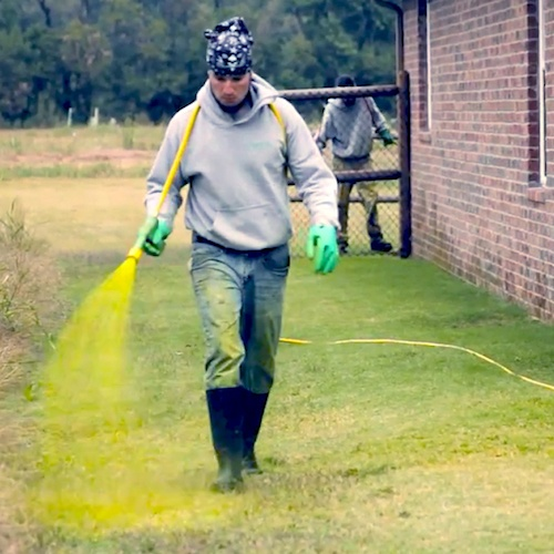 lawn-care-spraying-2.jpg