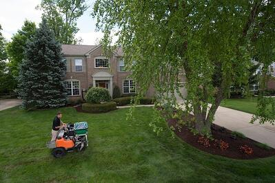 lawn care treatment service on Cincinnati lawn