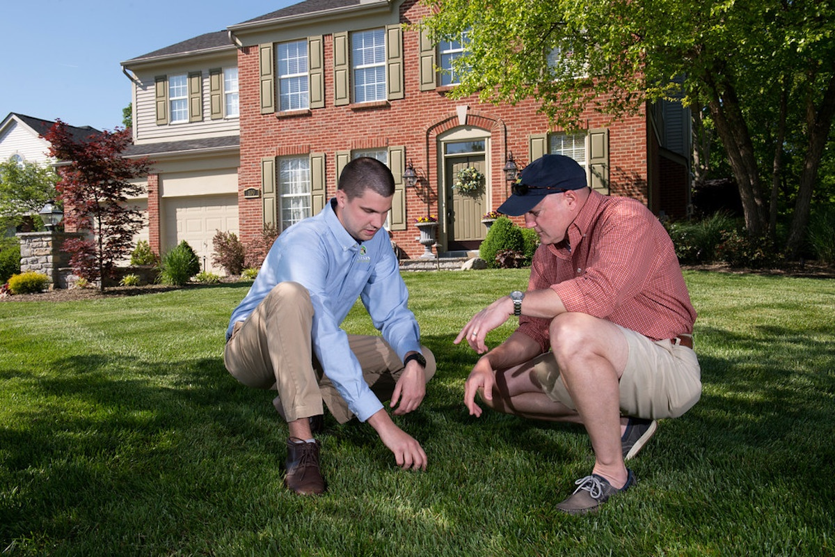 lawn care technician inspecting lawn in Cincinnati
