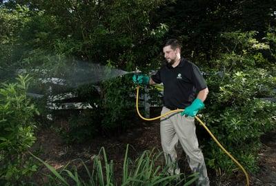 professional mosquito control technician