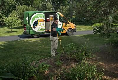 Oasis mosquito control technician spraying plants in lawn