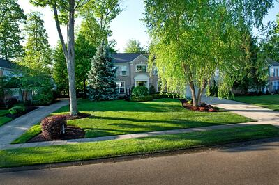 nice lawn serviced by good lawn care company