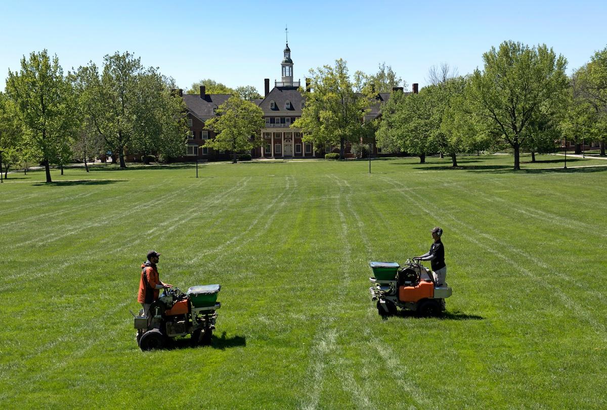 Lawn care technicians applying fertilizer