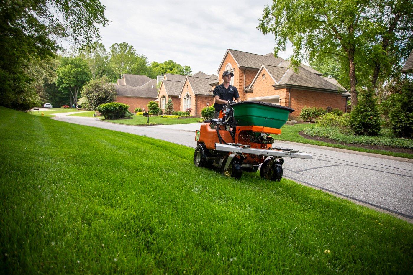 lawn technician fertilizing lawn in summer