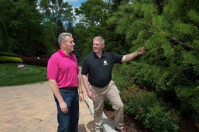 Oasis Turf & Tree Tree Inspection