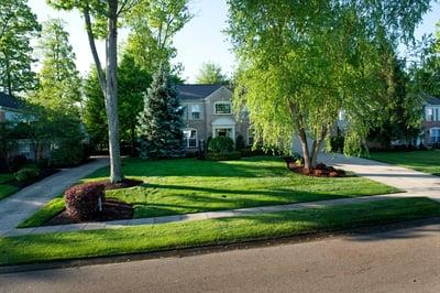 weed free lawn Cincinnati