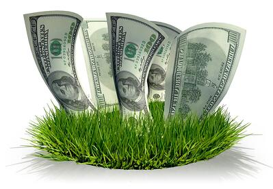lawn grass with hundred dollar bills growing