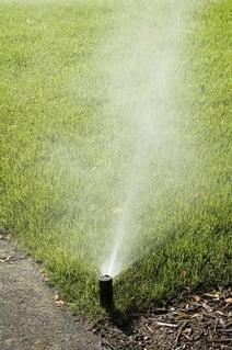 Automatic sprinkler misting corner of green lawn.jpeg