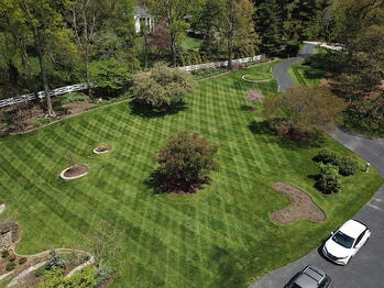 Aerial view  of thick, healthy lawn