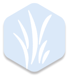 diamon_icon.png
