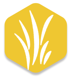 gold_icon.png