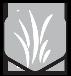platinum_icon.png