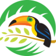 Coupon Logo